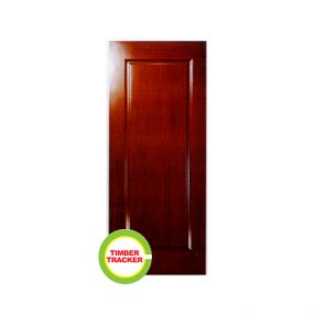 Modern Door CT 1P-FG