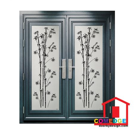 Security Door CT-EG301