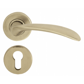 Lever Handle - BV 612 S/S